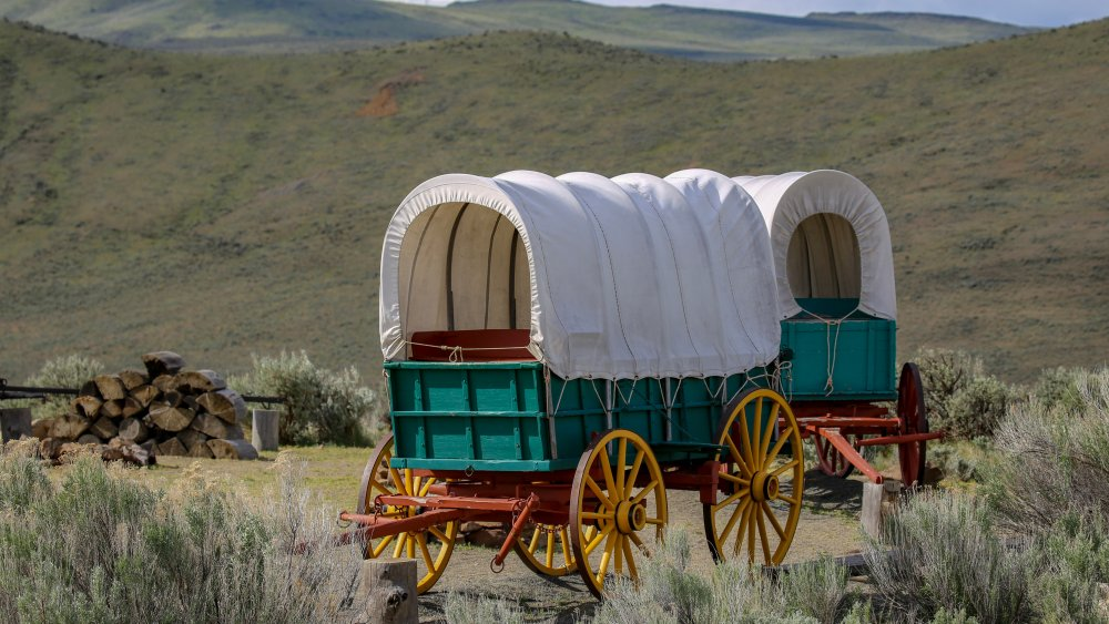 How milk sickness arose on the Oregon Trail