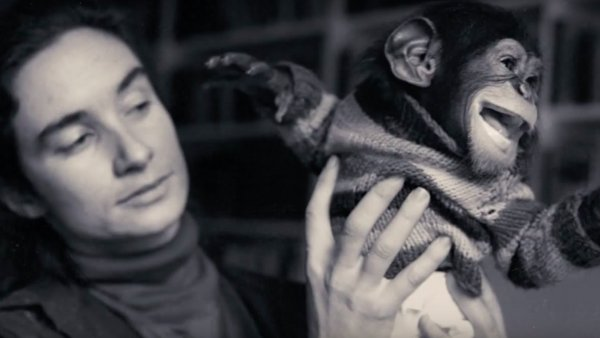 Insane stories from people who lived with animals