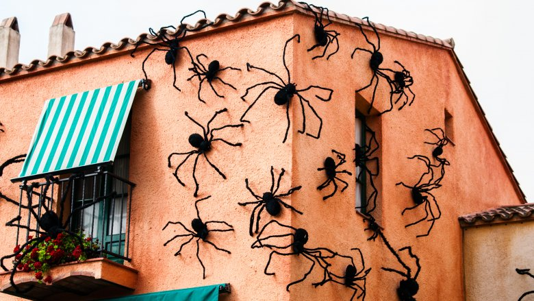 House covered with spiders