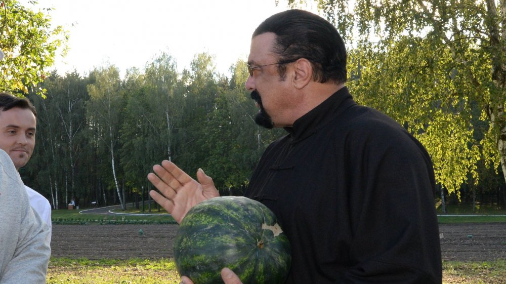 The truth about Steven Seagal's ex-wives