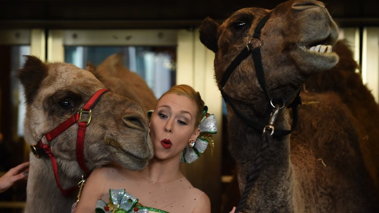 Rockette with camels