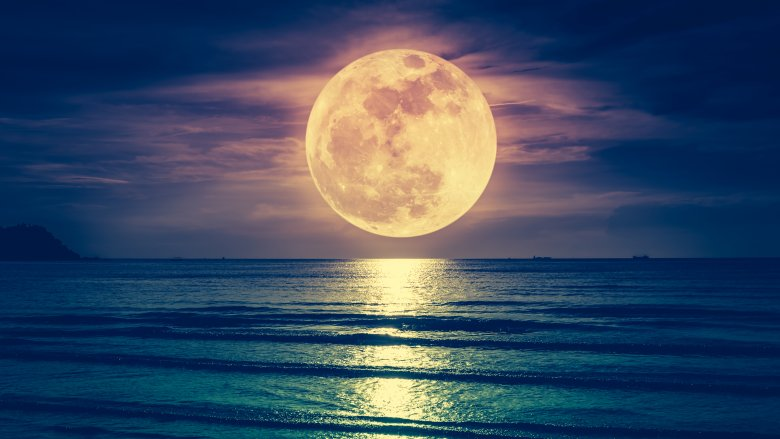 What Would Happen If There Were No Moon? - Grunge